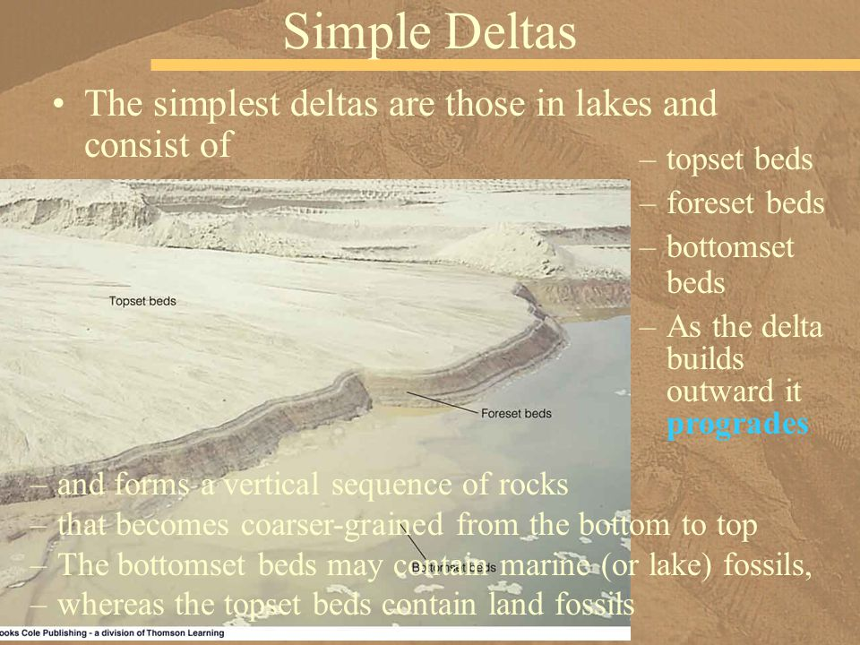 Simple Deltas The simplest deltas are those in lakes and consist of