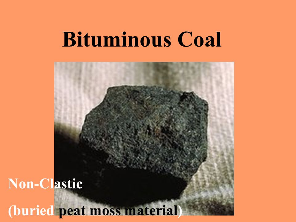 Bituminous Coal Non-Clastic (buried peat moss material)