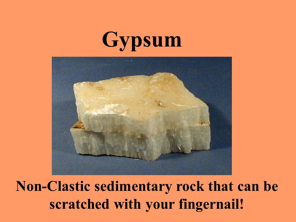 Gypsum Non-Clastic sedimentary rock that can be scratched with your fingernail!