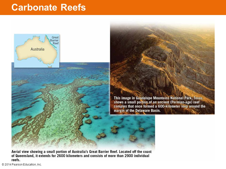 Carbonate Reefs