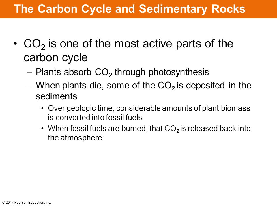 The Carbon Cycle and Sedimentary Rocks
