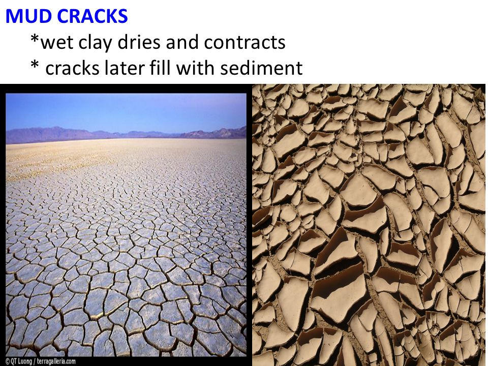 MUD CRACKS *wet clay dries and contracts * cracks later fill with sediment