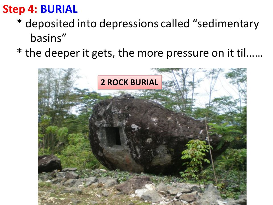 * deposited into depressions called sedimentary basins