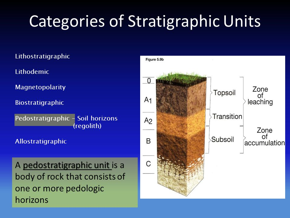 Categories of Stratigraphic Units