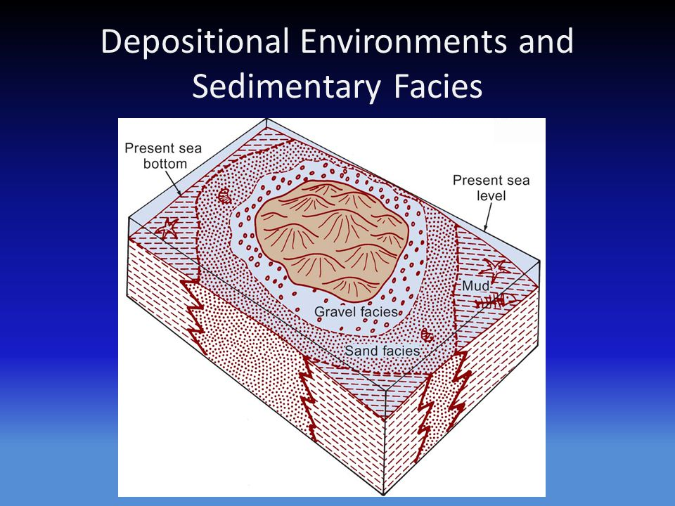 Depositional Environments and Sedimentary Facies