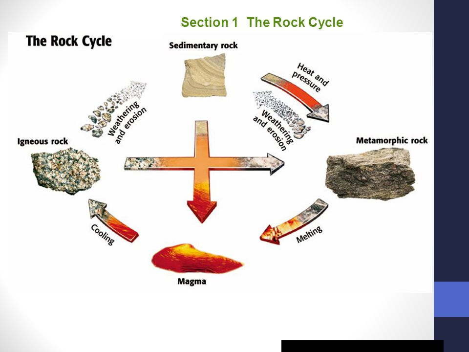 Section 1 The Rock Cycle