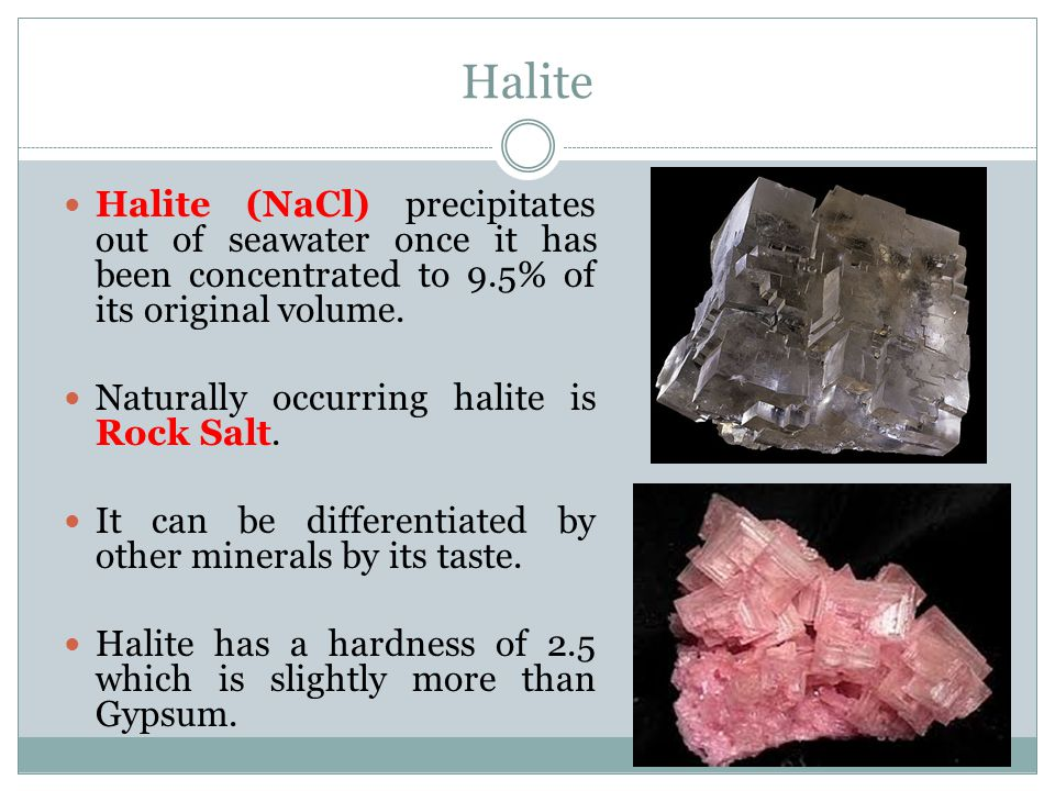 Halite Halite (NaCl) precipitates out of seawater once it has been concentrated to 9.5% of its original volume.
