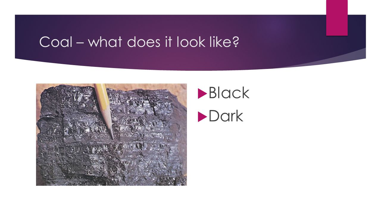 Coal – what does it look like