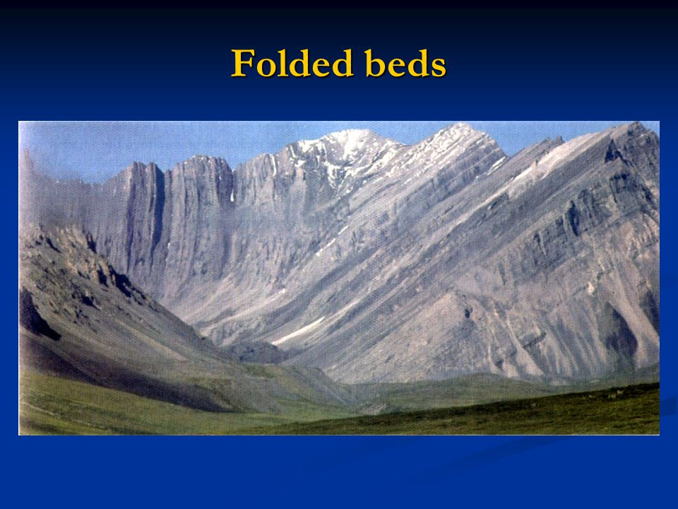 Folded beds