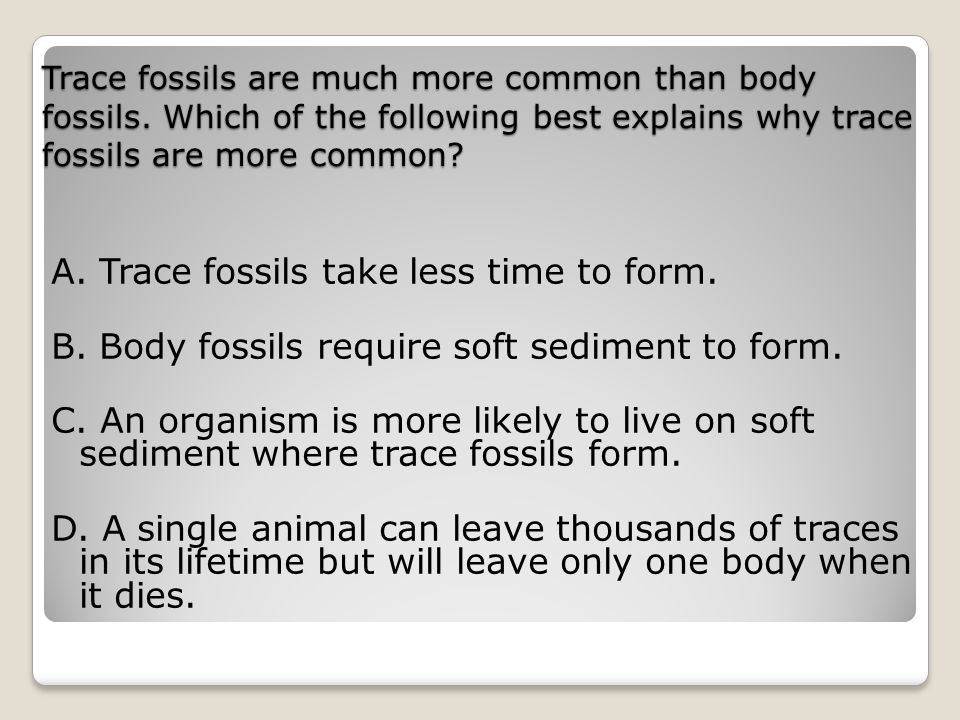 A. Trace fossils take less time to form.