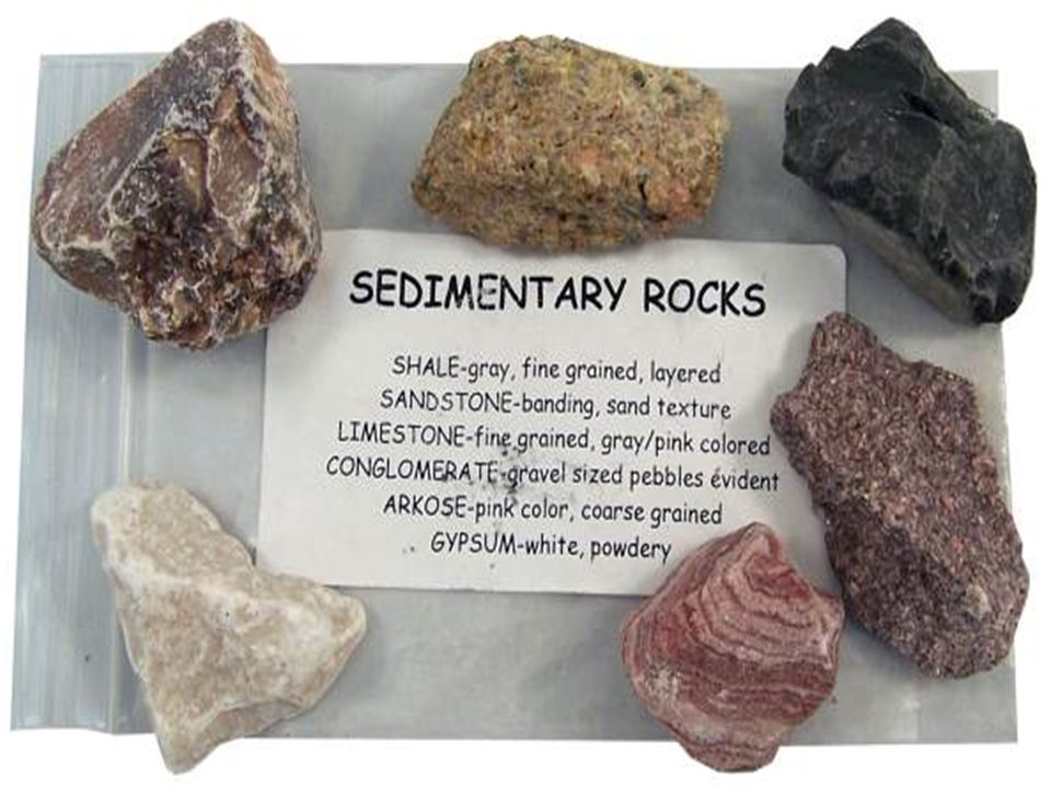 Rocks that are formed in flat layers called strata