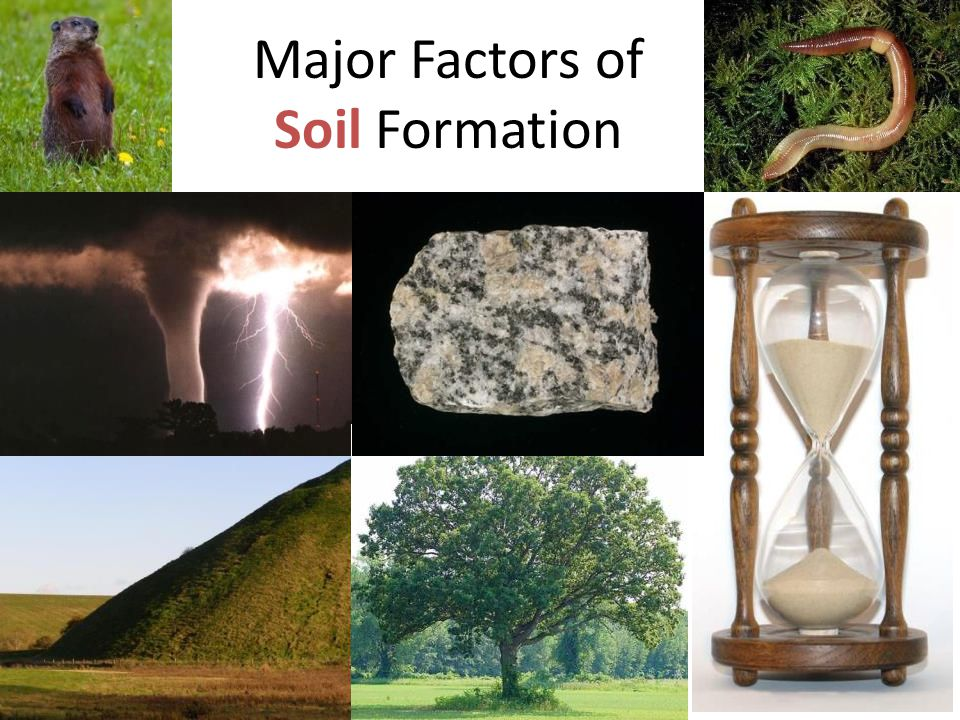 Major Factors of Soil Formation