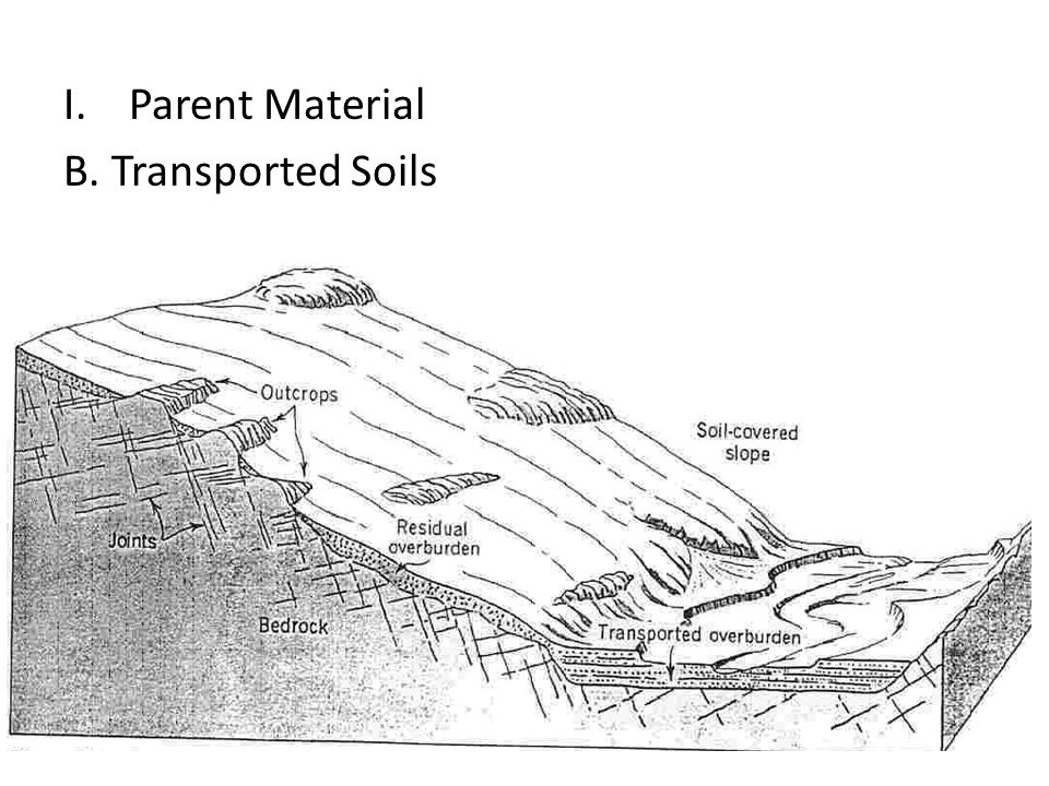 Parent Material B. Transported Soils R