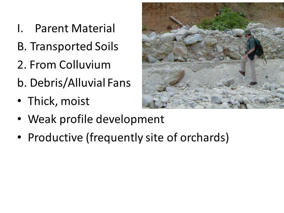 Parent Material B. Transported Soils. 2. From Colluvium. b. Debris/Alluvial Fans. Thick, moist. Weak profile development.