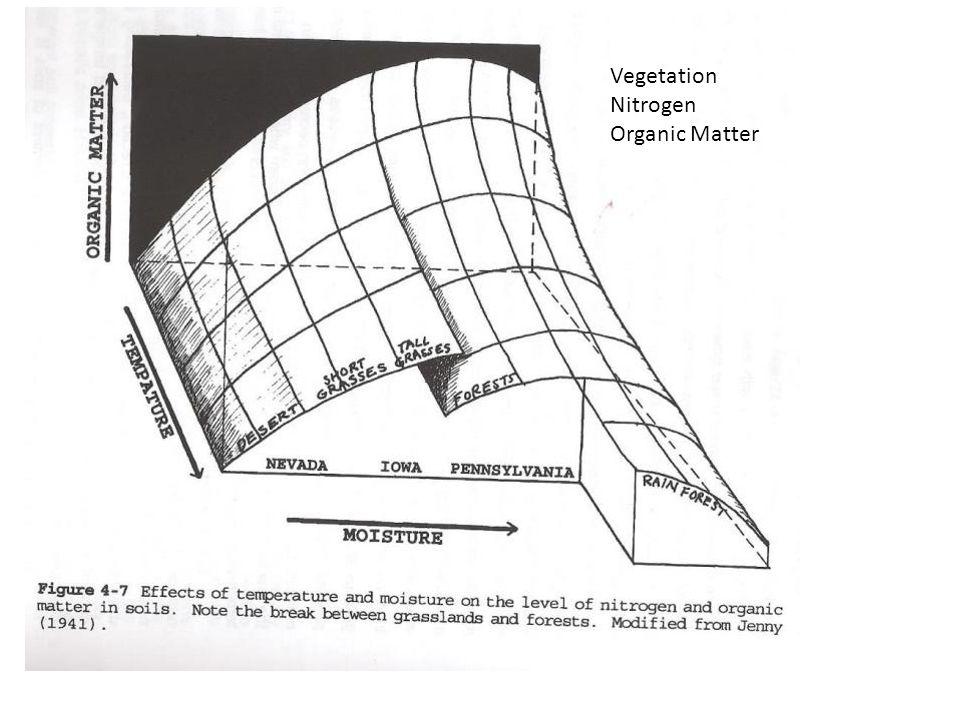 Vegetation Nitrogen Organic Matter