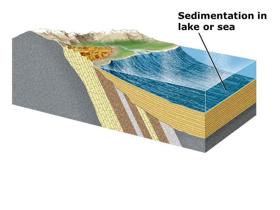 Sedimentation in lake or sea