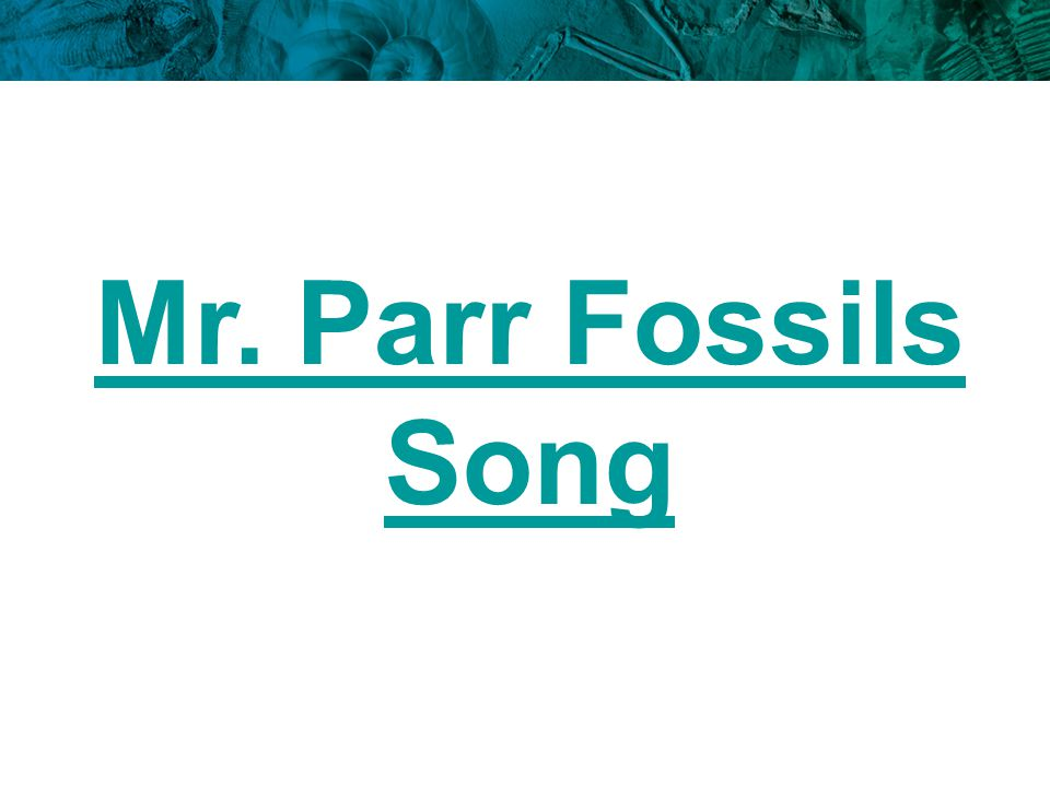 Mr. Parr Fossils Song