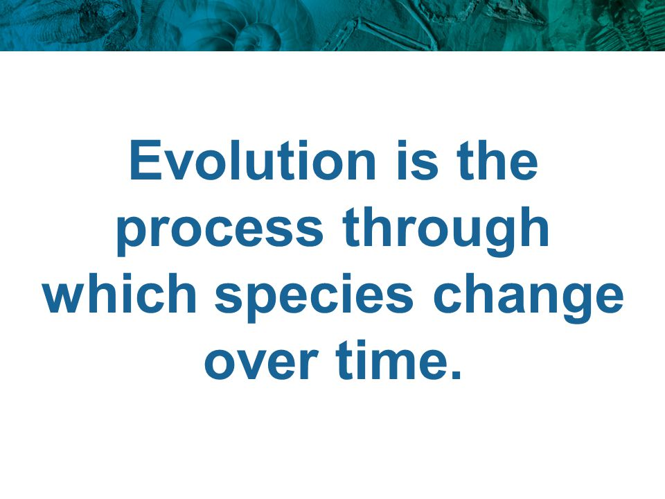 Evolution is the process through which species change over time.