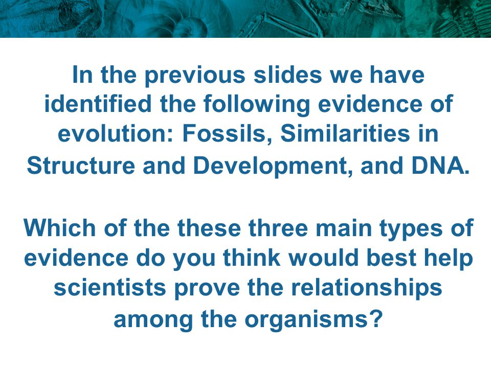 In the previous slides we have identified the following evidence of evolution: Fossils, Similarities in Structure and Development, and DNA.