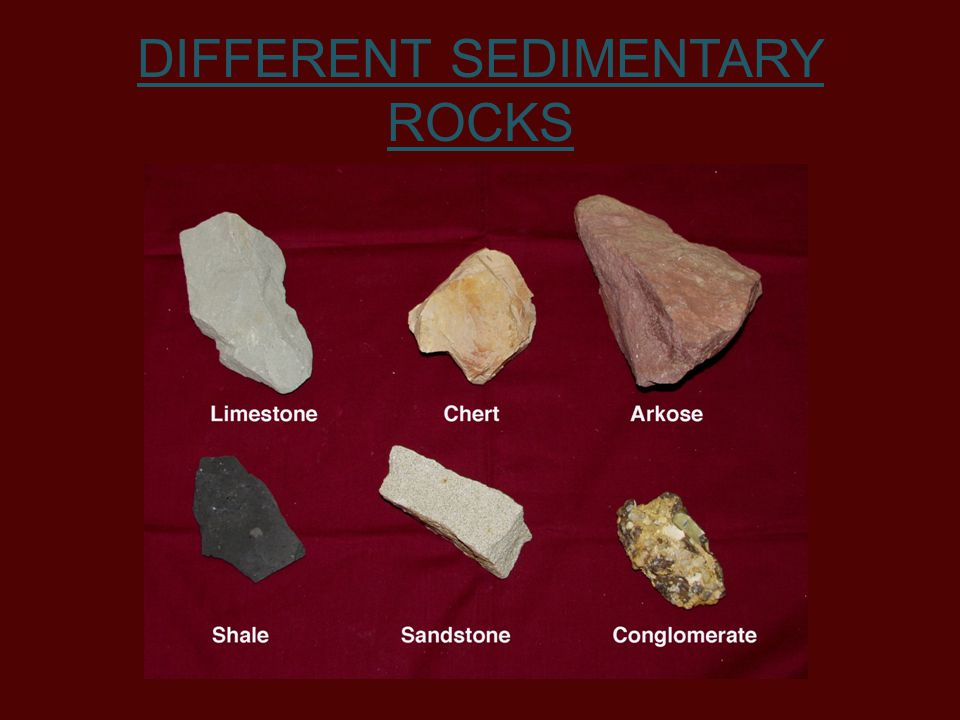 DIFFERENT SEDIMENTARY ROCKS