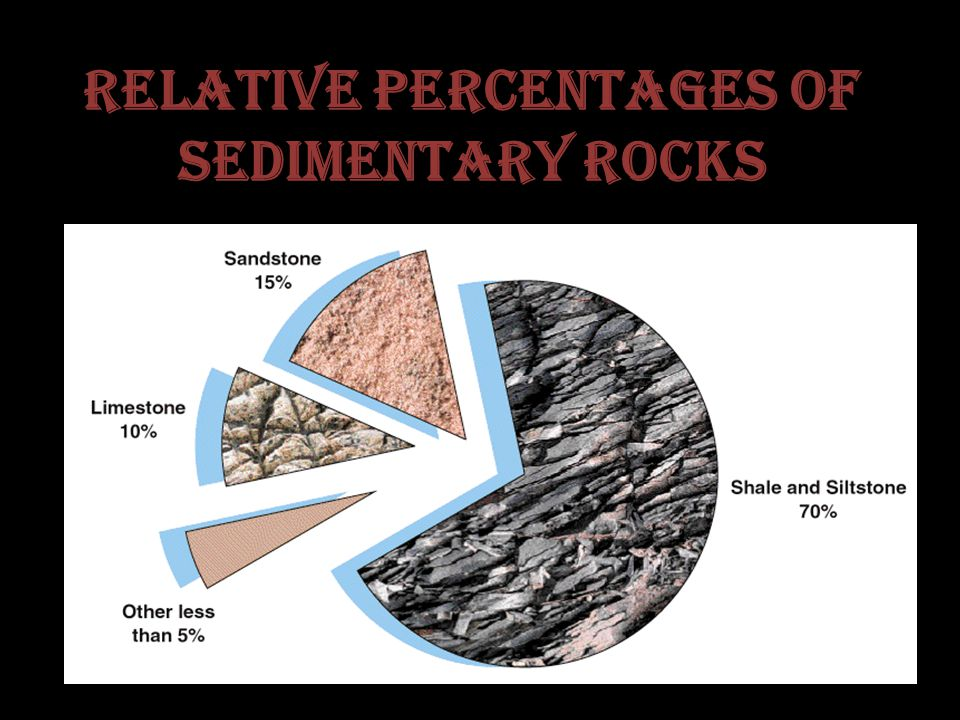 Relative Percentages of Sedimentary Rocks