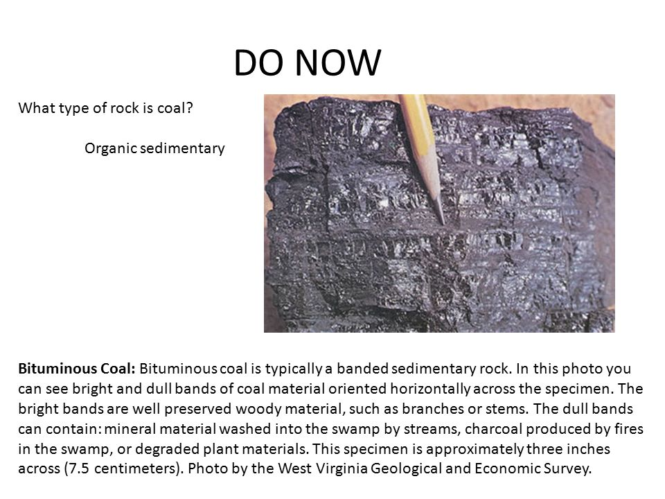 DO NOW What type of rock is coal Organic sedimentary