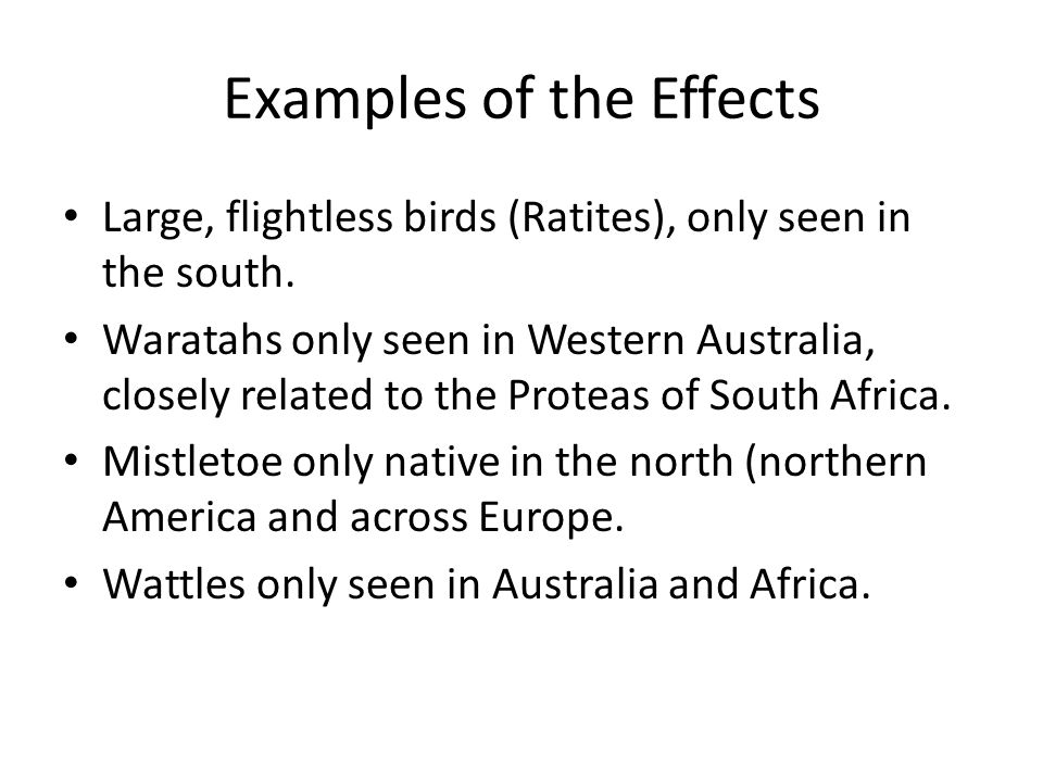 Examples of the Effects