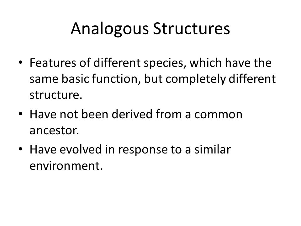 Analogous Structures Features of different species, which have the same basic function, but completely different structure.