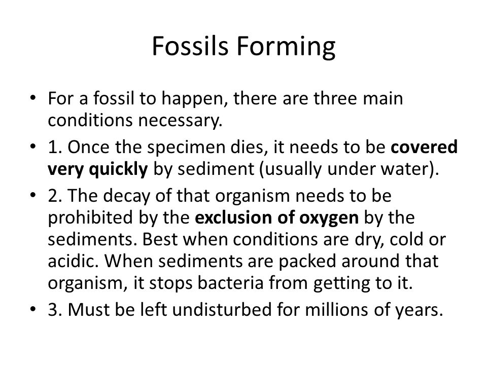 Fossils Forming For a fossil to happen, there are three main conditions necessary.