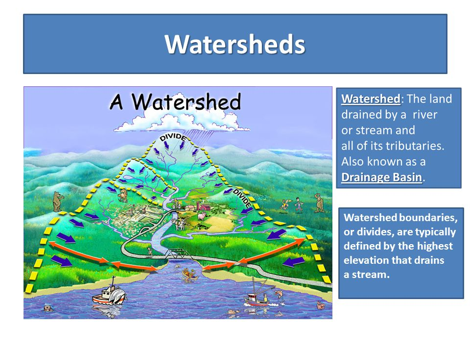 Watersheds Watershed boundaries, or divides, are typically