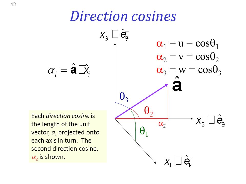 Direction cosines a1 = u = cosq1 a2 = v = cosq2 a3 = w = cosq3 q3 q2