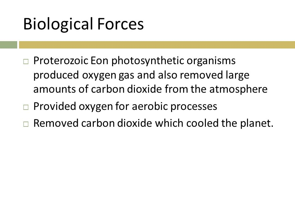 Biological Forces Proterozoic Eon photosynthetic organisms produced oxygen gas and also removed large amounts of carbon dioxide from the atmosphere.
