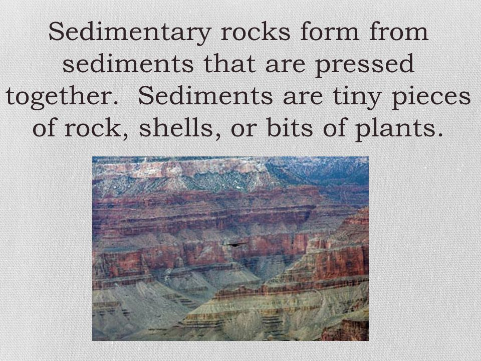 Sedimentary rocks form from sediments that are pressed together