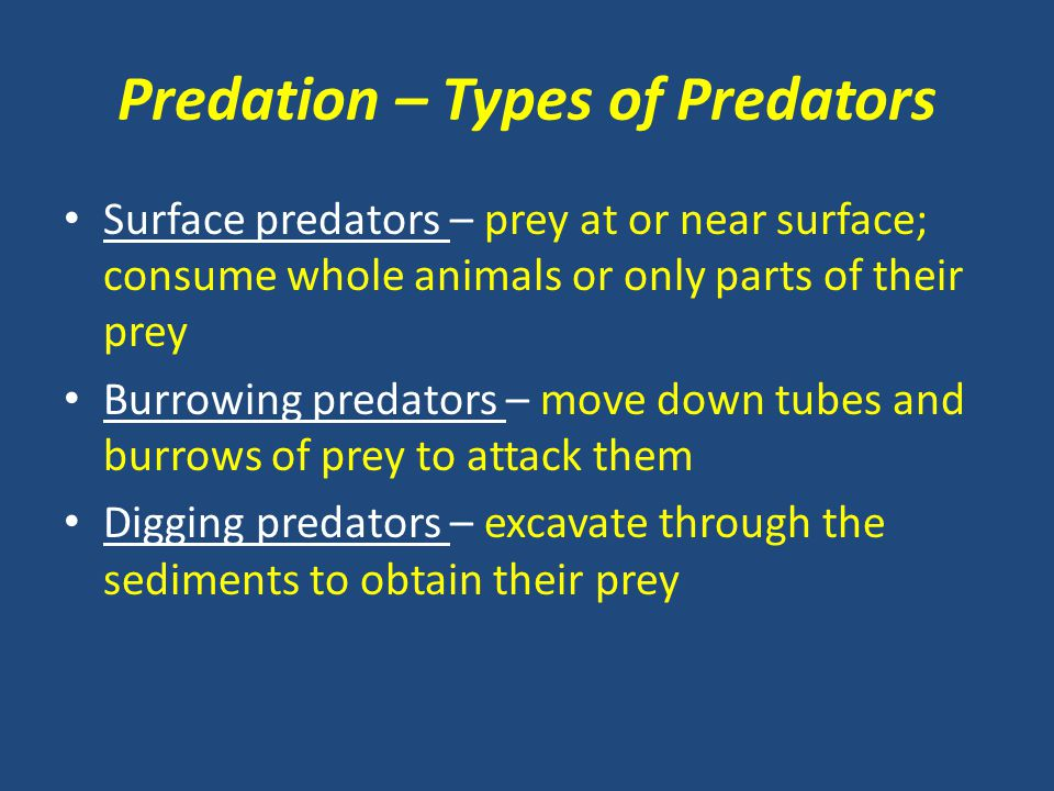 Predation – Types of Predators