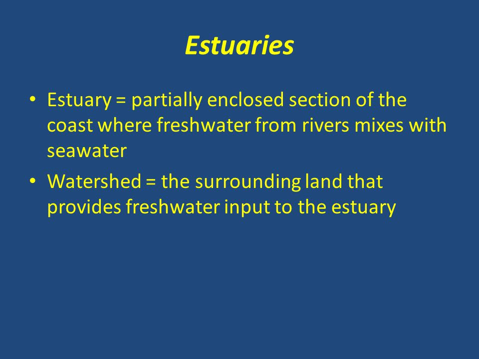 Estuaries Estuary = partially enclosed section of the coast where freshwater from rivers mixes with seawater.