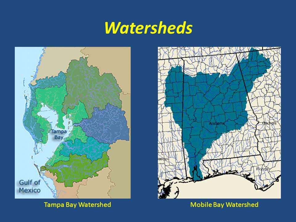 Watersheds Tampa Bay Watershed Mobile Bay Watershed