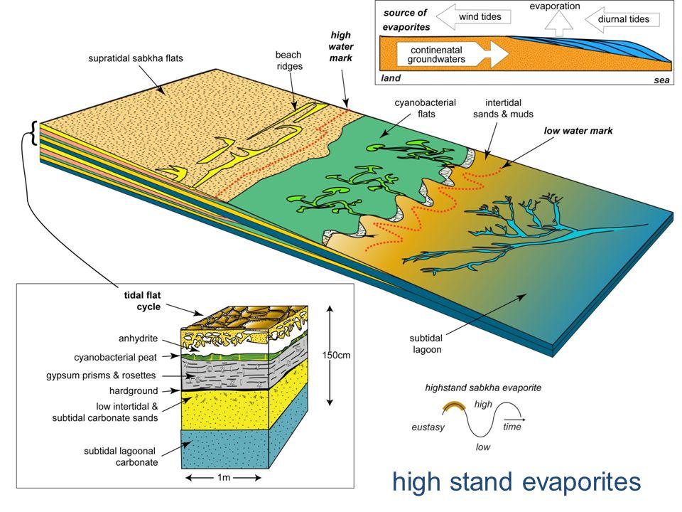 high stand evaporites