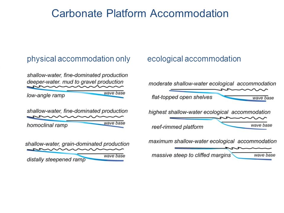 Carbonate Platform Accommodation