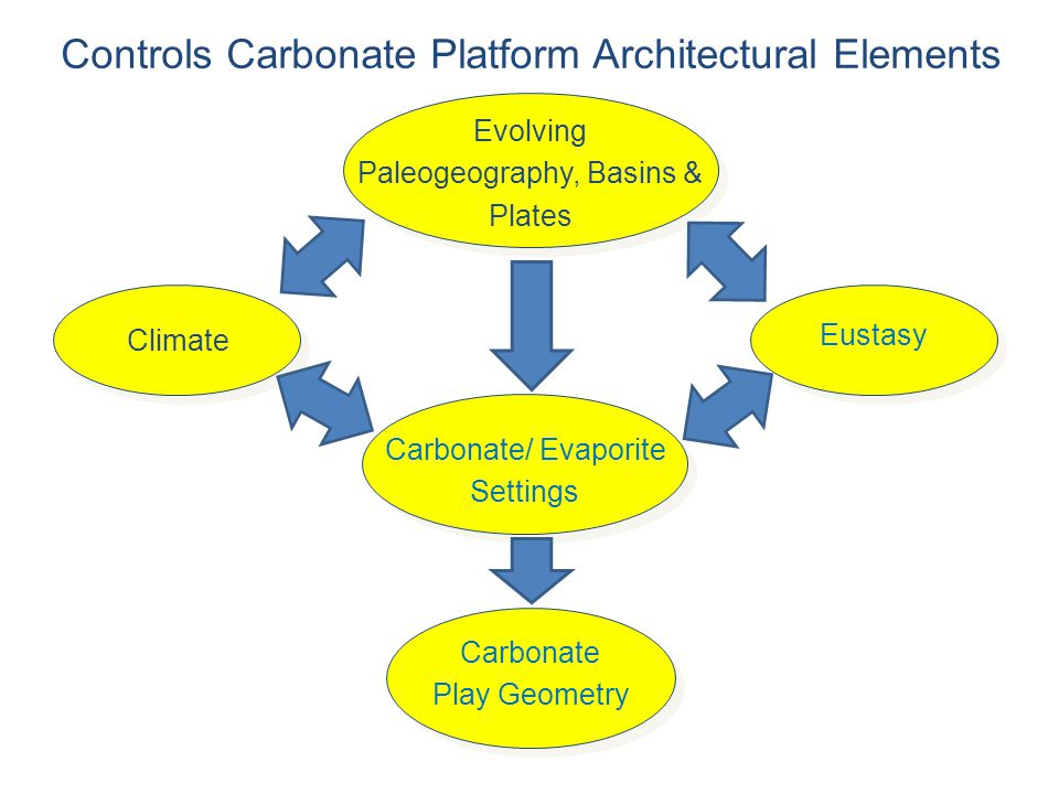 Controls Carbonate Platform Architectural Elements