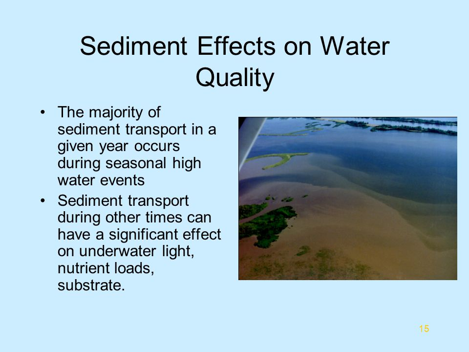 Sediment Effects on Water Quality