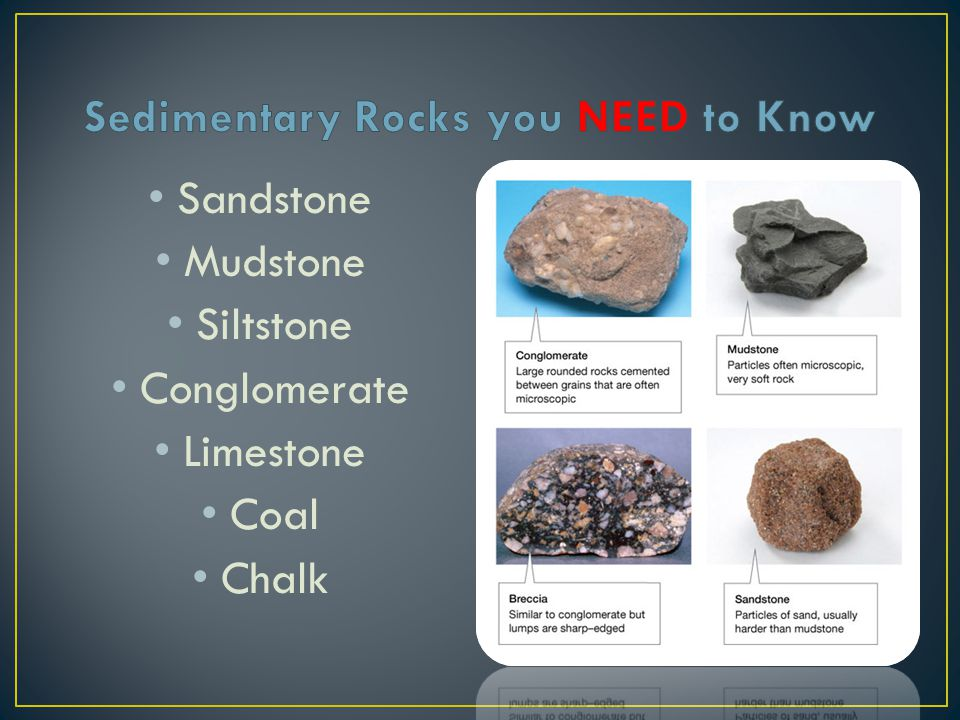 Sedimentary Rocks you NEED to Know