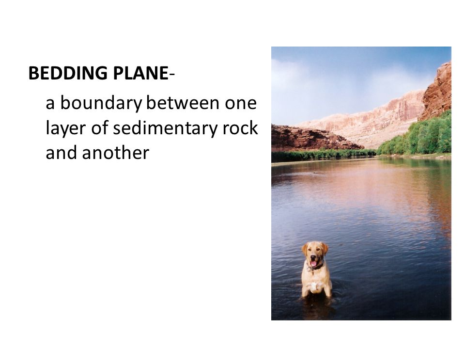 BEDDING PLANE- a boundary between one layer of sedimentary rock and another