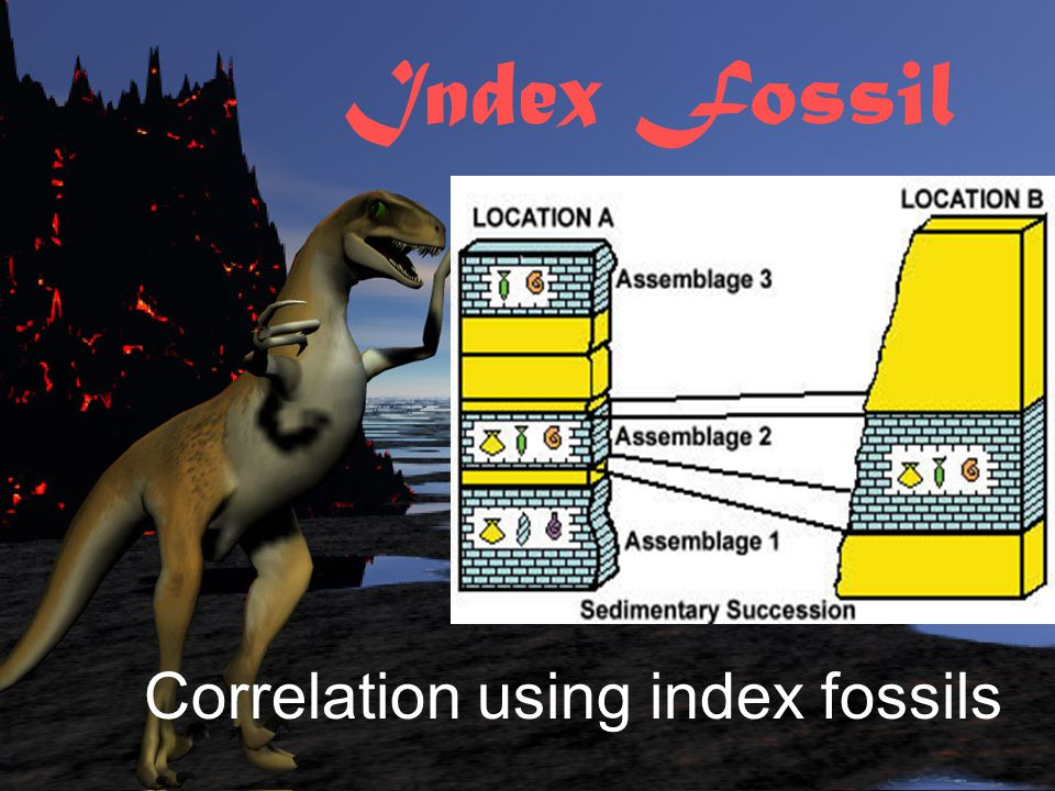 Index Fossil Correlation using index fossils