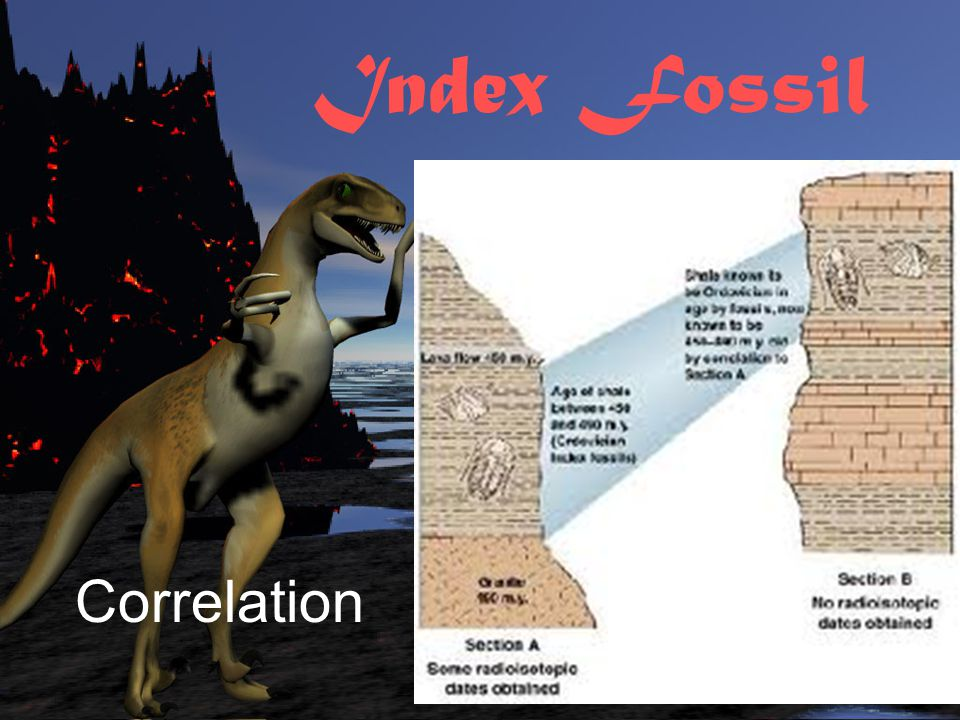 Index Fossil Correlation