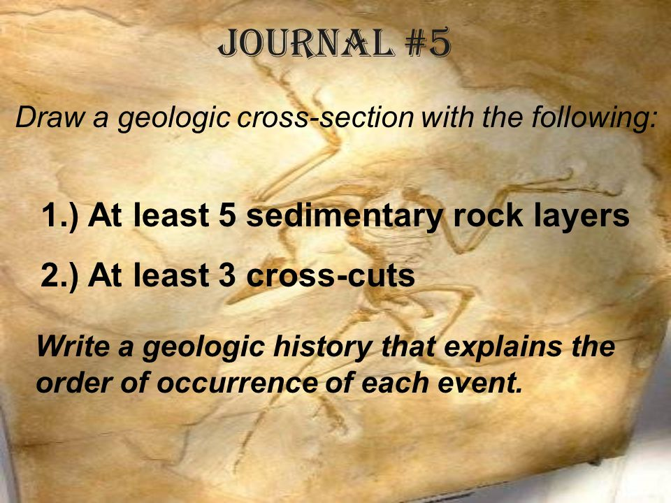 Draw a geologic cross-section with the following: