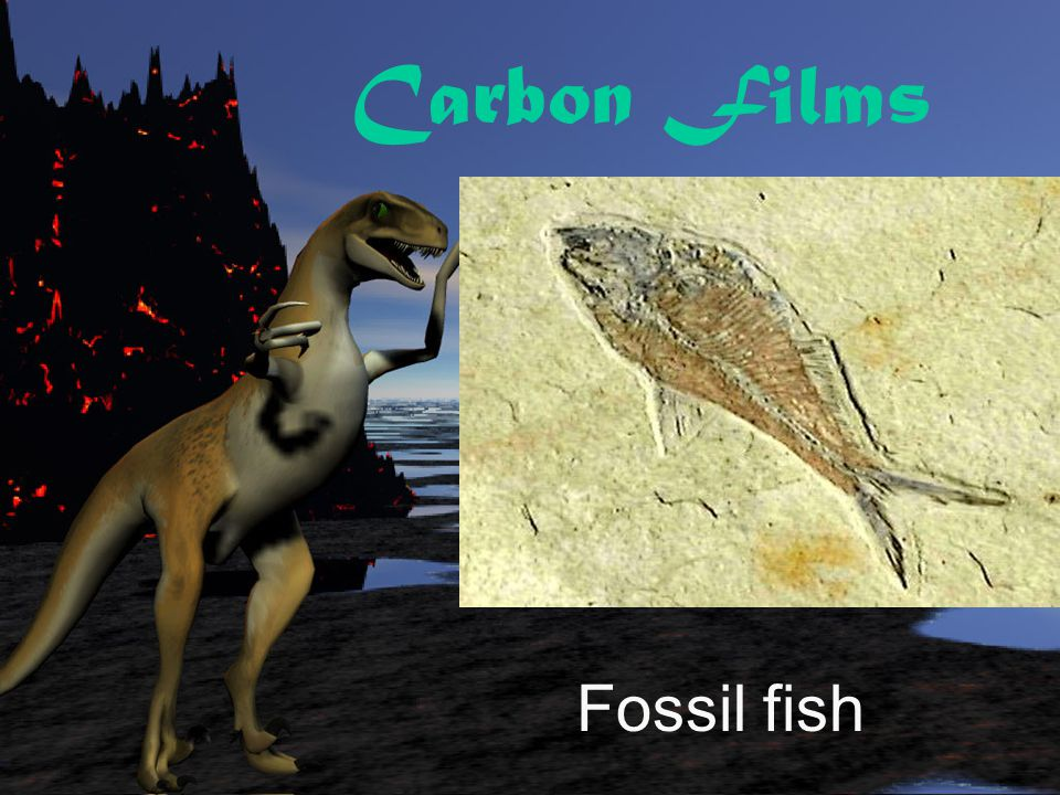 Carbon Films Fossil fish