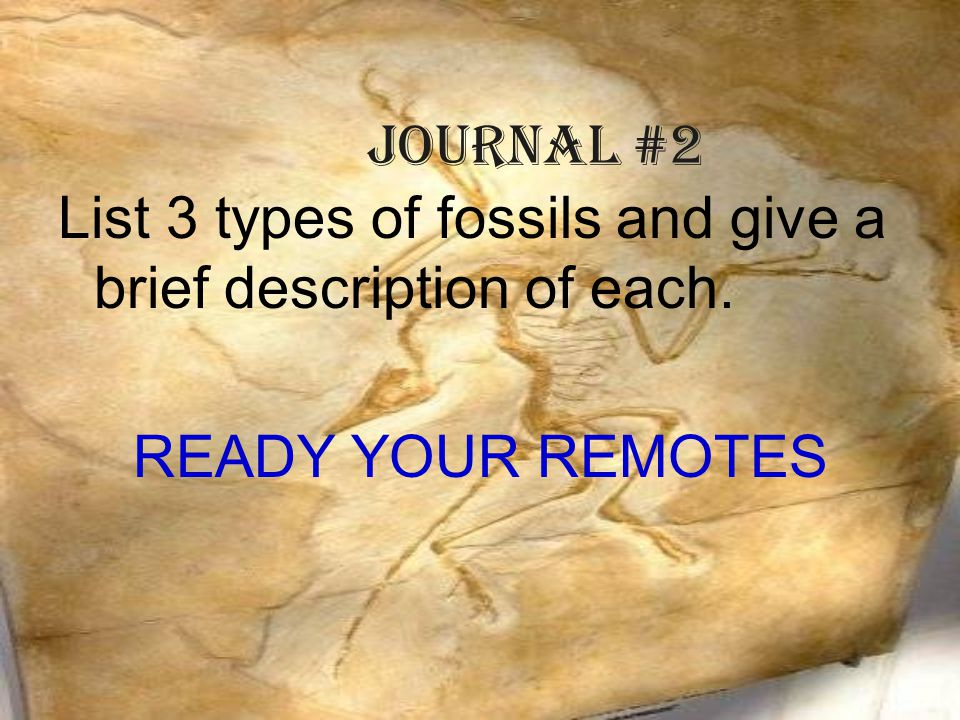 Journal #2 List 3 types of fossils and give a brief description of each. READY YOUR REMOTES
