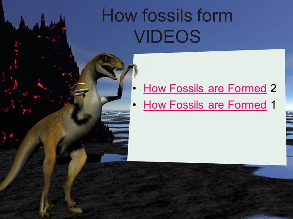How fossils form VIDEOS