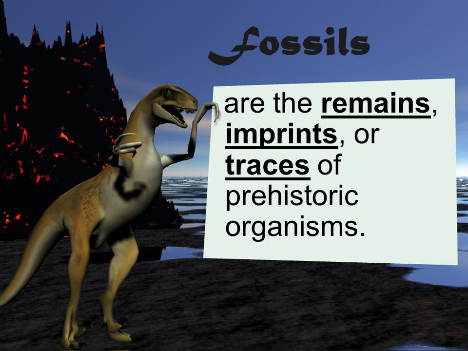 Fossils are the remains, imprints, or traces of prehistoric organisms.