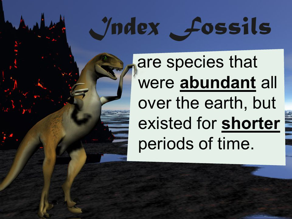 Index Fossils are species that were abundant all over the earth, but existed for shorter periods of time.